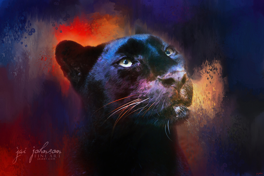 Colorful Expressions Black Leopard Art