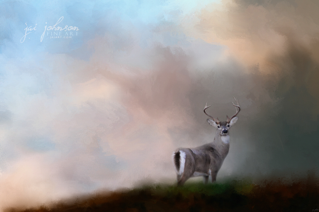 Buck On The Hill - White Tailed Deer Art