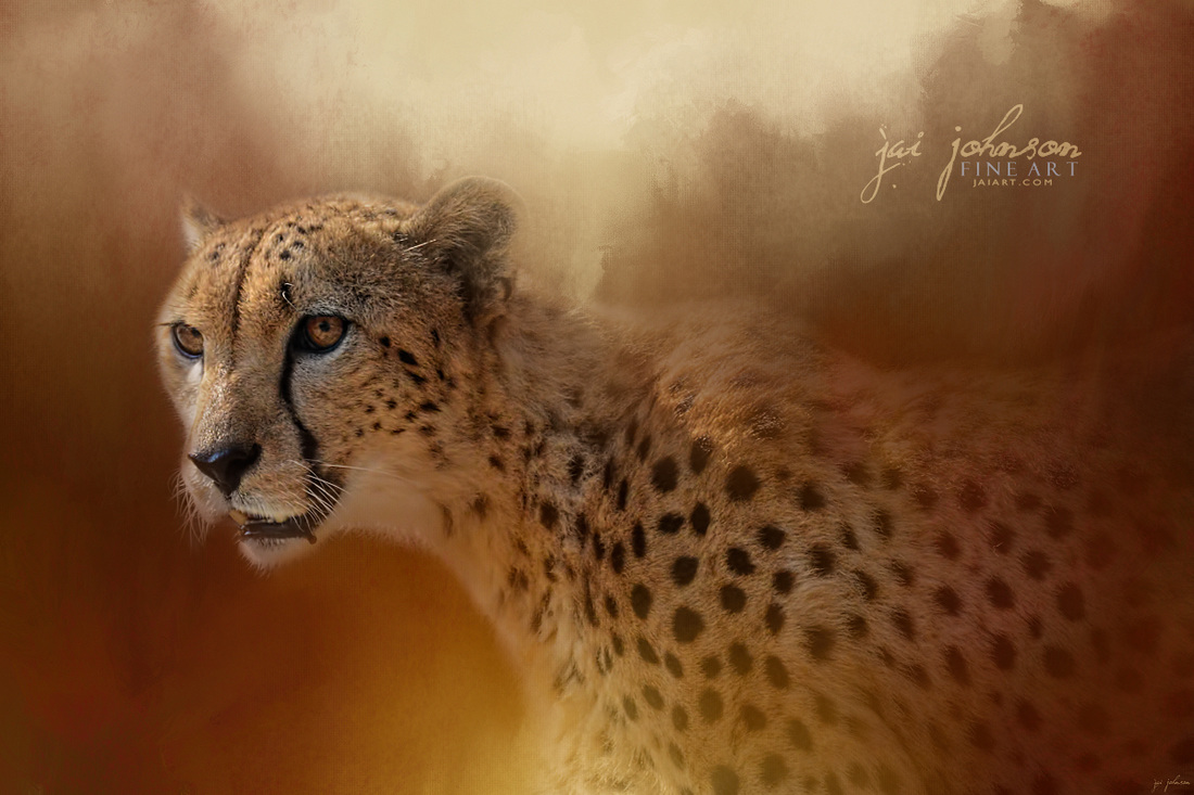 One With The Sun Cheetah Art