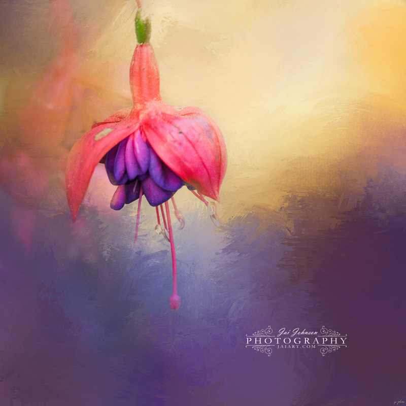 Fuchsia Drop Flower Art
