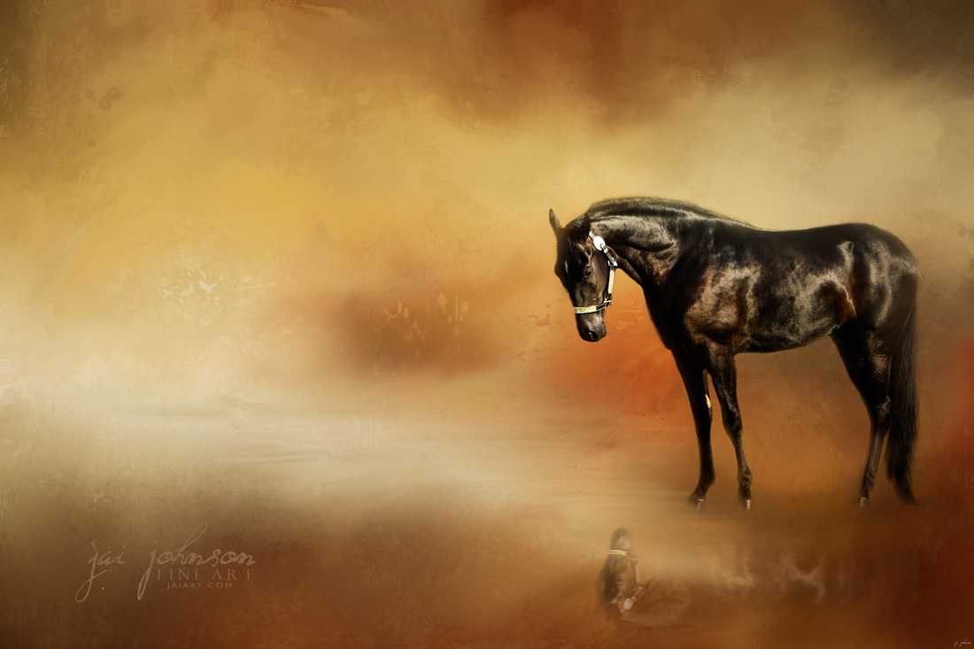 Reflecting - Tennessee Walking Horse Art