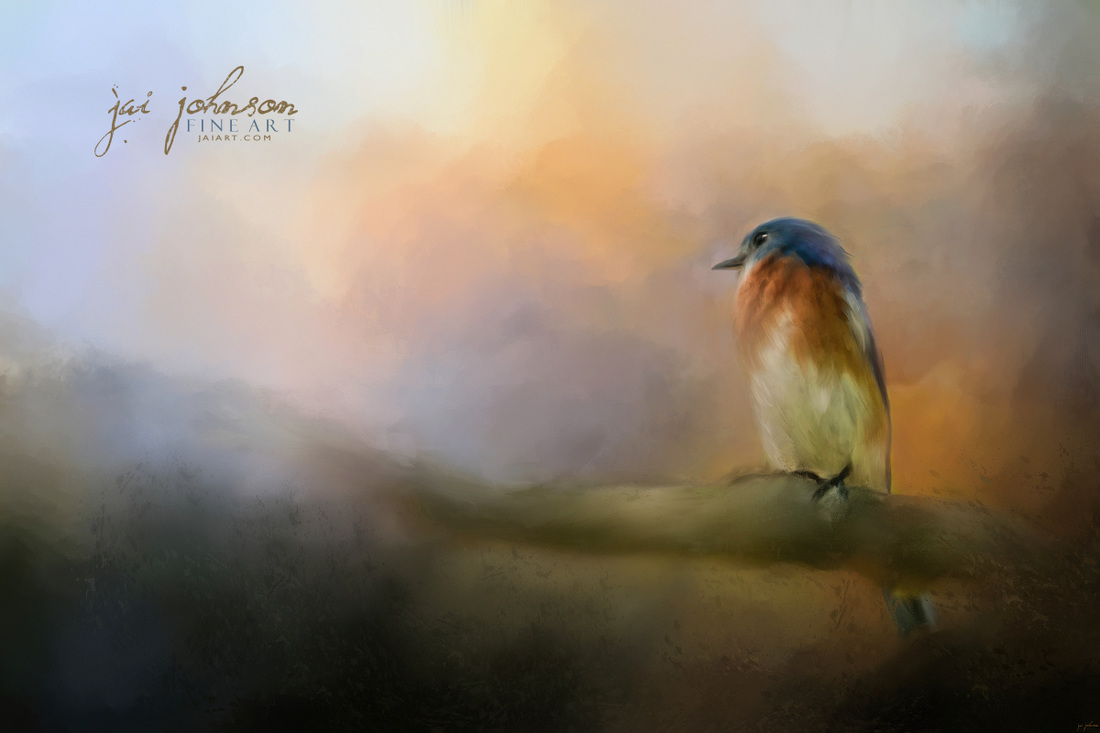Bluebird In The Perfect Light - songbird art