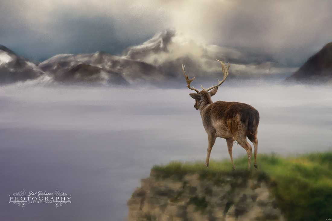 Mountains Out Of Reach - Fallow Deer Art